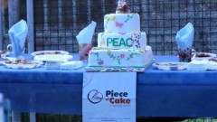 Refreshments included vegan pizza and cake donated by local eateries.