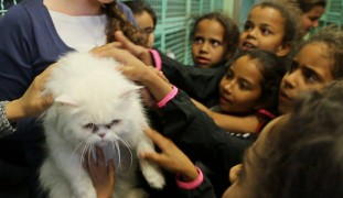 The girls were instructed to show the rescued animals a kinder side of humanity.