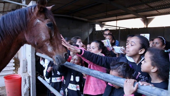 Bonding over a horse in the SPCA stable.