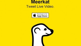 Meerkat took Twitter by storm before a setback.