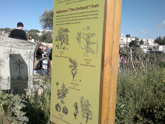 A signpost describes the trees along the Orchard Trail. (Photo: Abigail Klein Leichman)