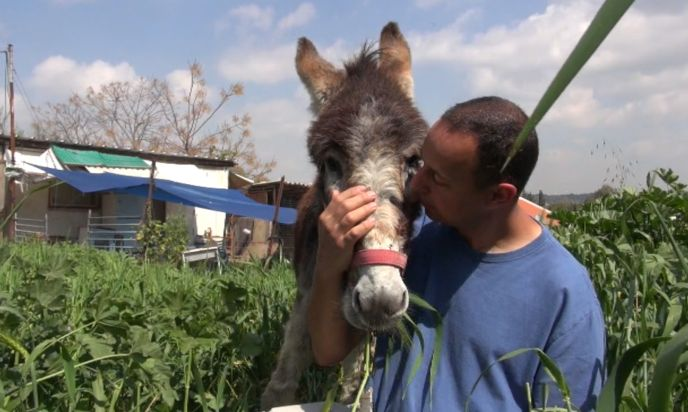 Eldad and Eldad at Pegasus donkey and horse refuge in Israel.