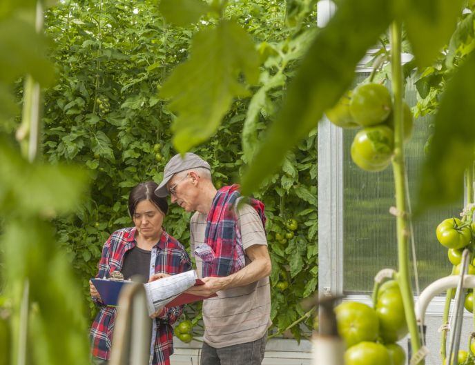 Reports for precision agriculture decisions. Image via Shutterstock.com