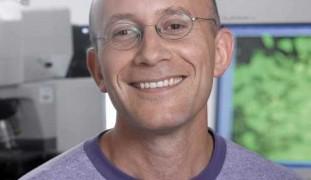 Prof. Yuval Dor
