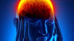 Brain trauma (Shutterstock.com)