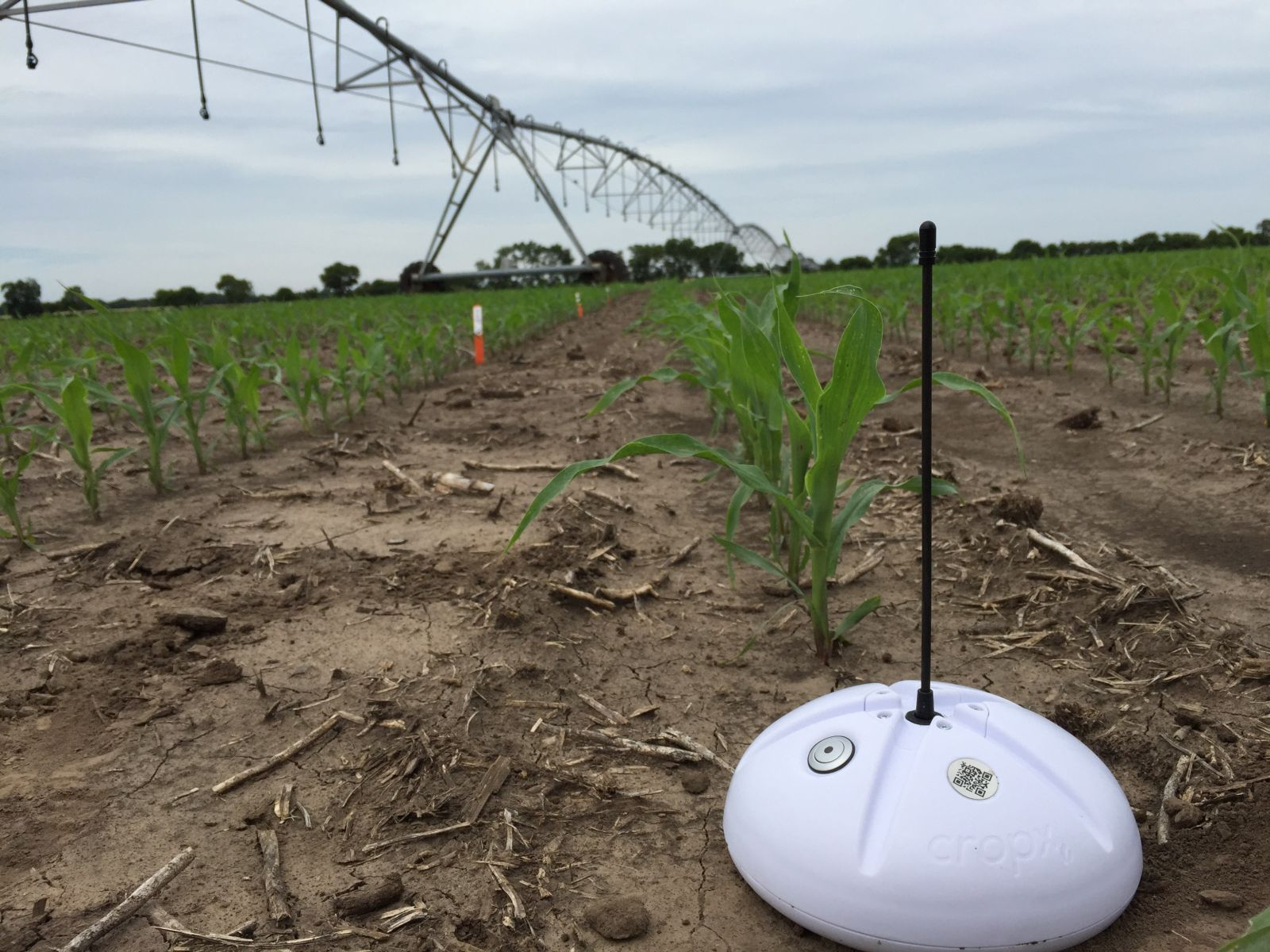 The CropX device at work in the fields. Photo courtesy of CropX