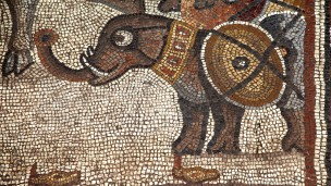 An elephant decorates the 5th century mosaic.  Credit: Jim Haberman