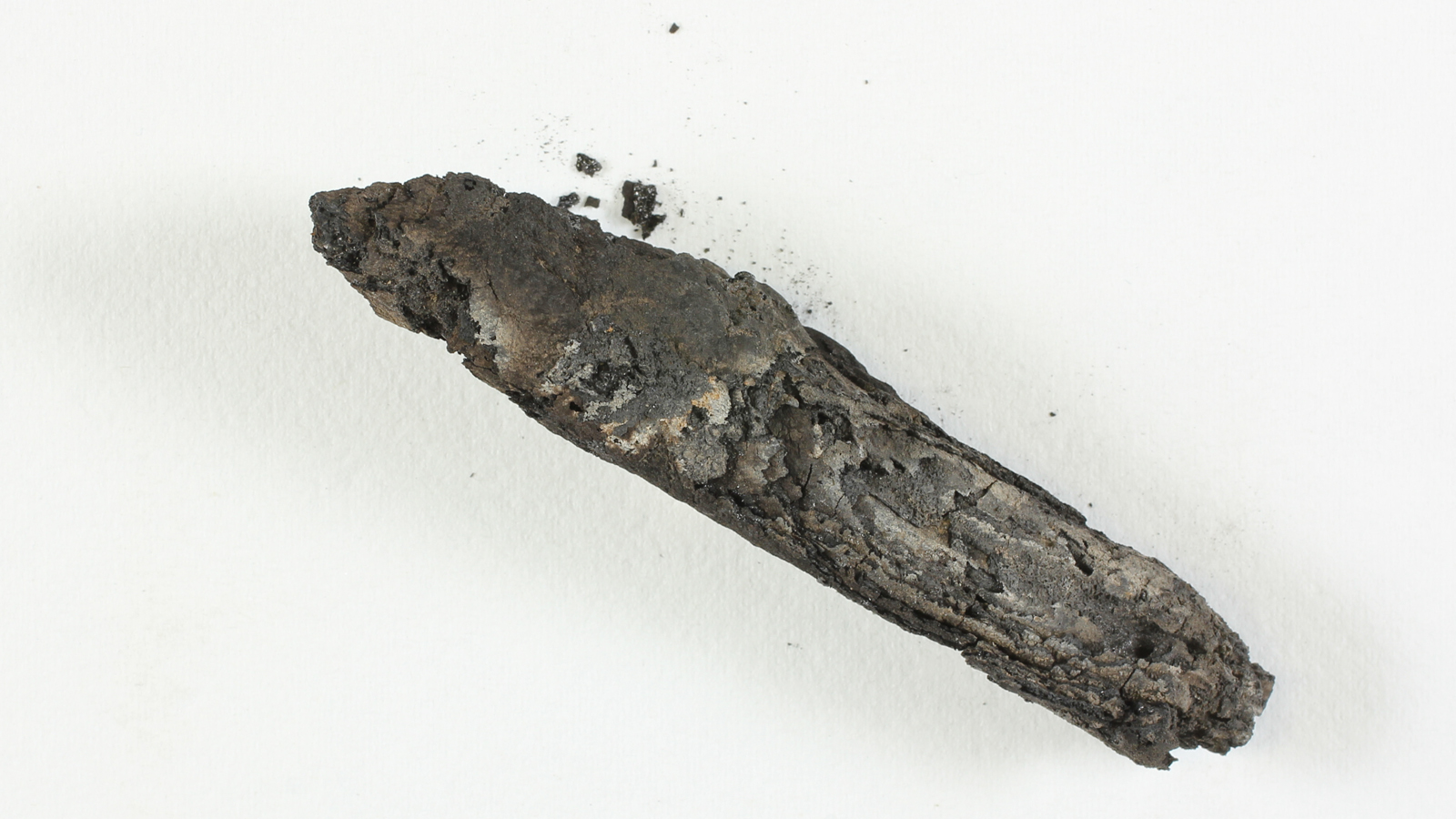 Ein Gedi scroll  fragment. (Photo: Shai Halevi-IAA)