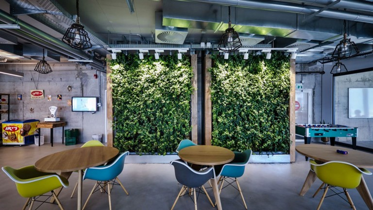 Facebook's live green wall brings nature indoors. Photo by Itay Sikolsky