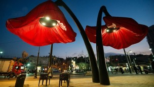 The poppies open according to pedestrian movement, delighting passersby. Photo courtesy of HQ Architects