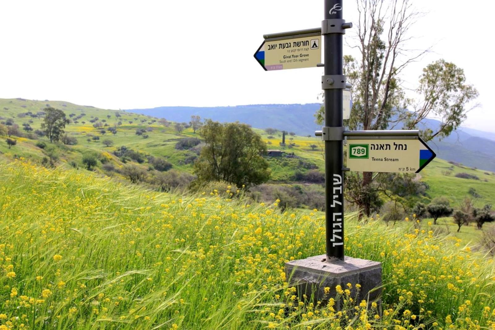 There's more than one way to traverse the Golan Trail. Photo by Israel Eshed