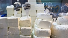 White cheeses from Israel. Photo by www.shutterstock.com
