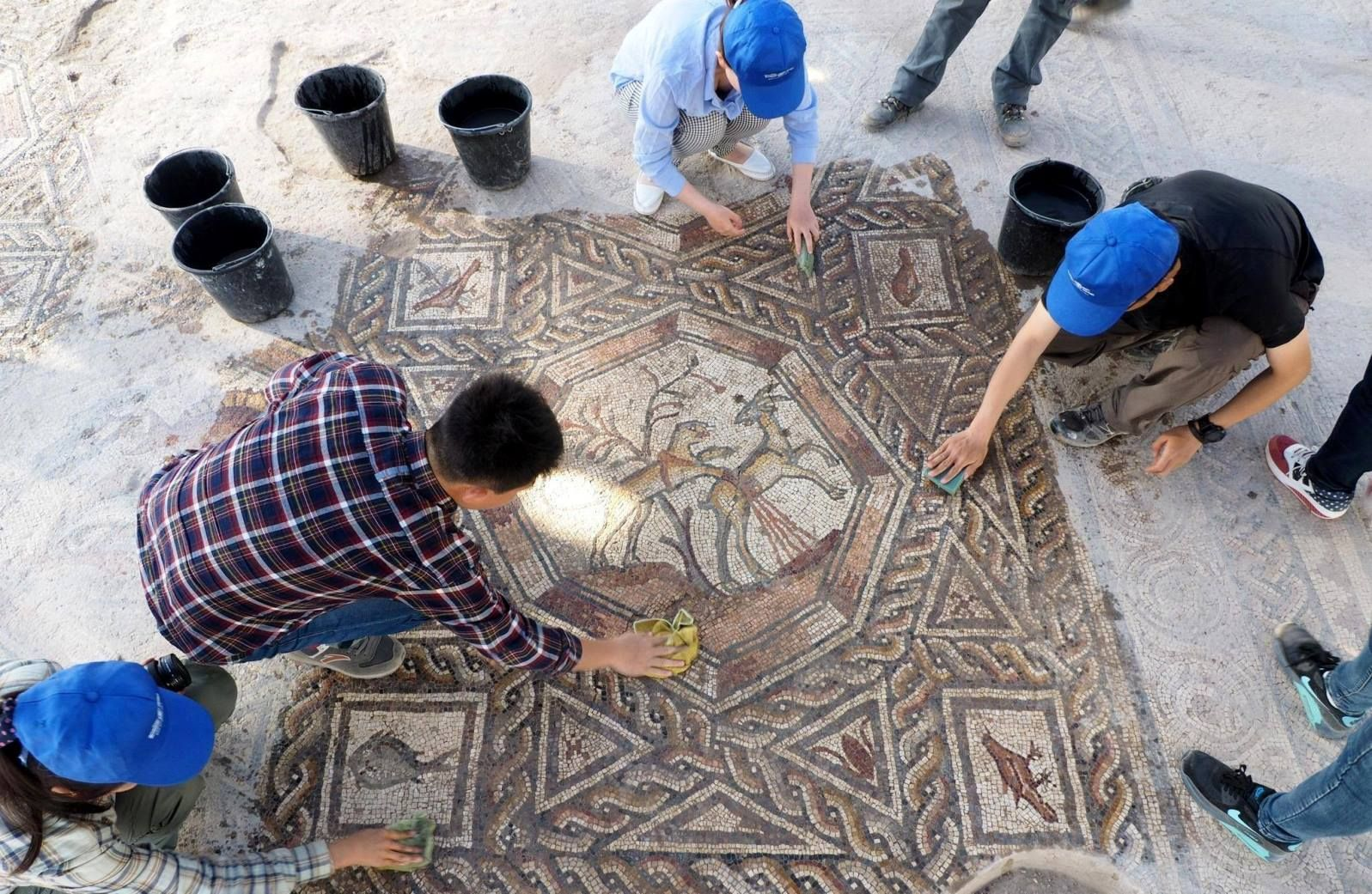 The latest mosaic find in Lod. Photo courtesy of Israel Antiquities Authority