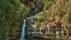 A waterfall at Ein Gedi. Photo by www.shutterstock.com