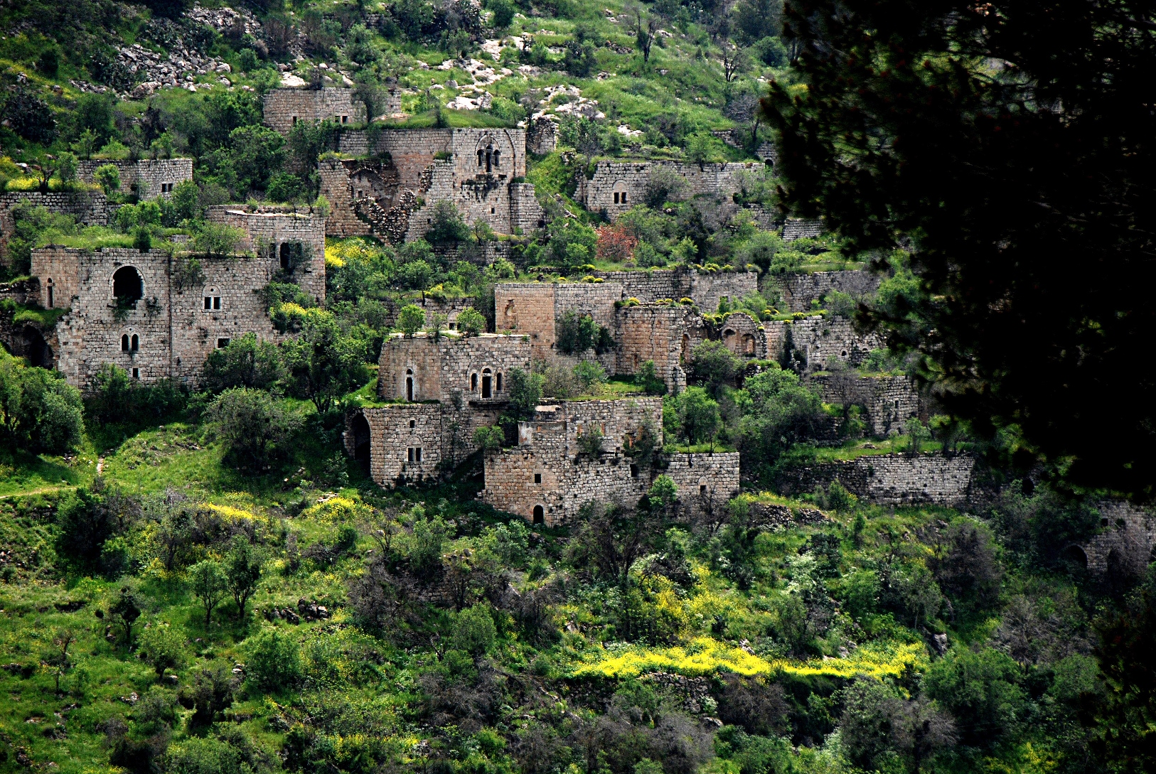 The old village of Lifta on the outskirts of Jerusalem. Photo by Yehudit Eliaf