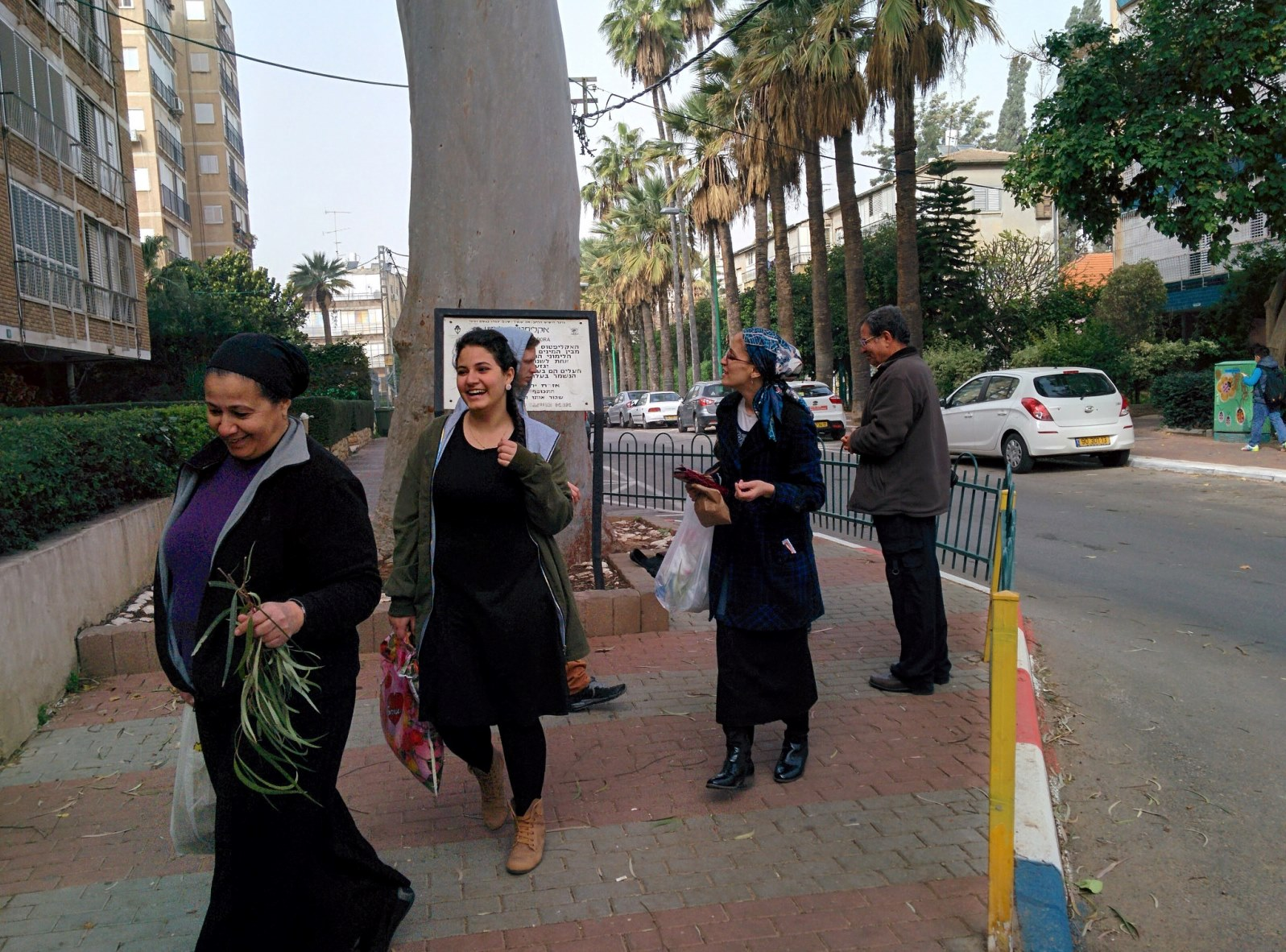 People gathering leaves from the lemon-scented eucalyptus on a street in Petah Tikva. Photo by Viva Sarah Press