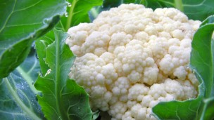 Cauliflower is back in style, thanks to an Israel chef. Image via Shutterstock.com