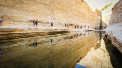 The best time to hike in Israel's Negev and Arava deserts is right now