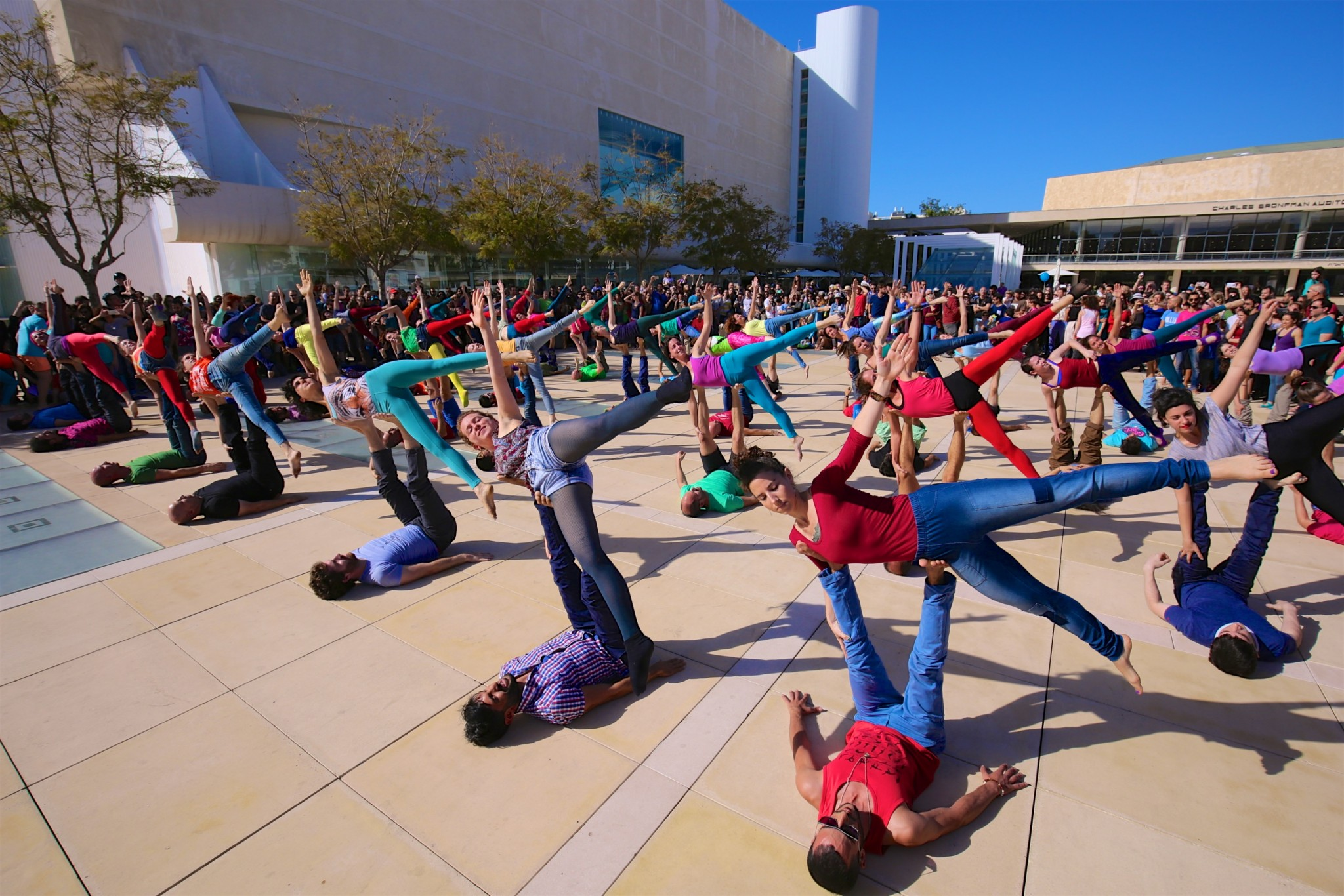 Acro-yoga. Photo by Eyal Bar