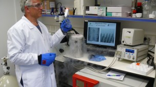 Prof. Ido Braslavsky at his Hebrew University lab, where his team investigates ice-binding proteins and new methods in cryopreservation of cells and tissues. Photo by Amir Bein
