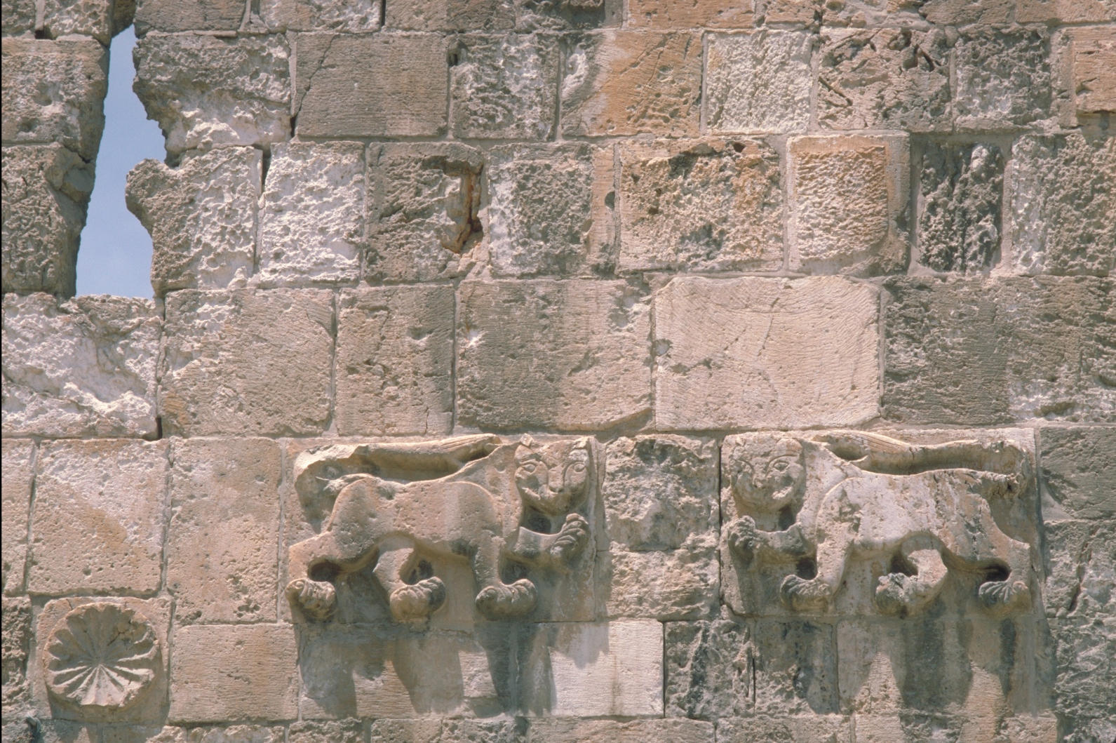 The lions of Sultan Baybars above Jerusalem's Lions (St. Stephen's) Gate. Photo courtesy of the Israel Ministry of Tourism