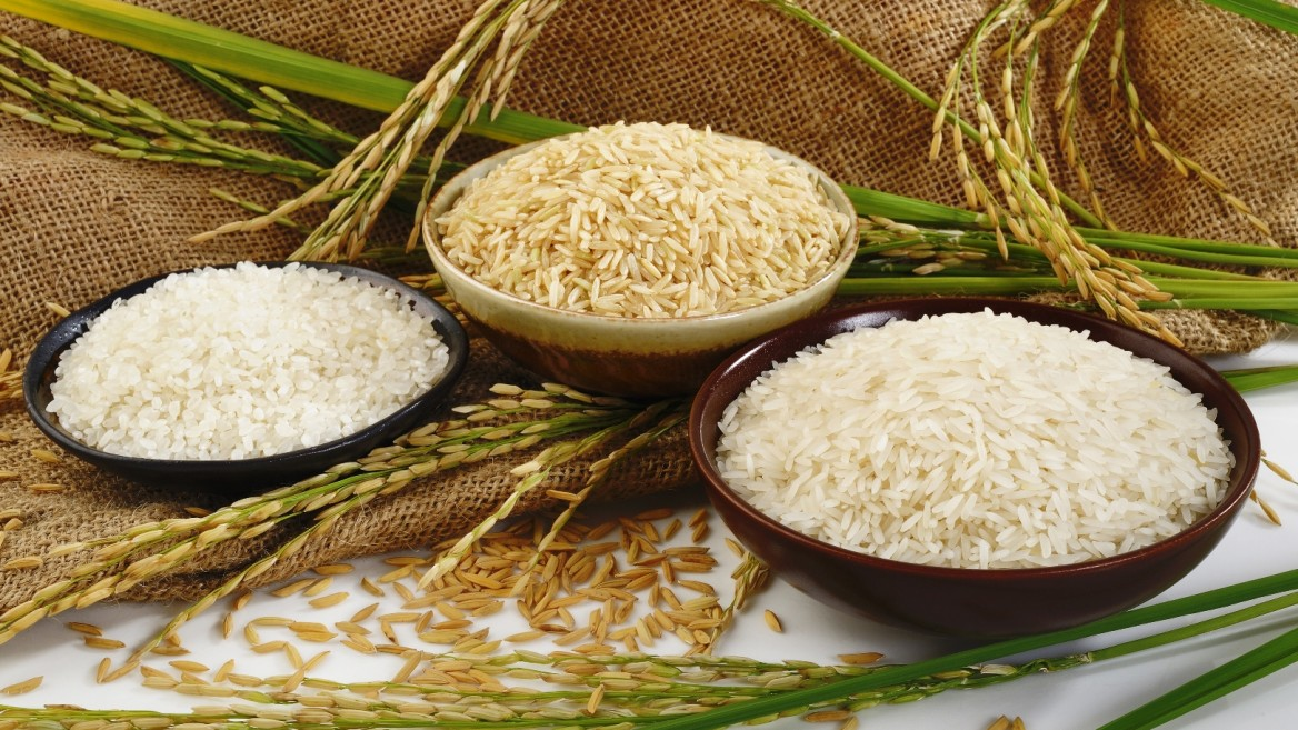 California to grow rice sustainably with Israeli water-tech