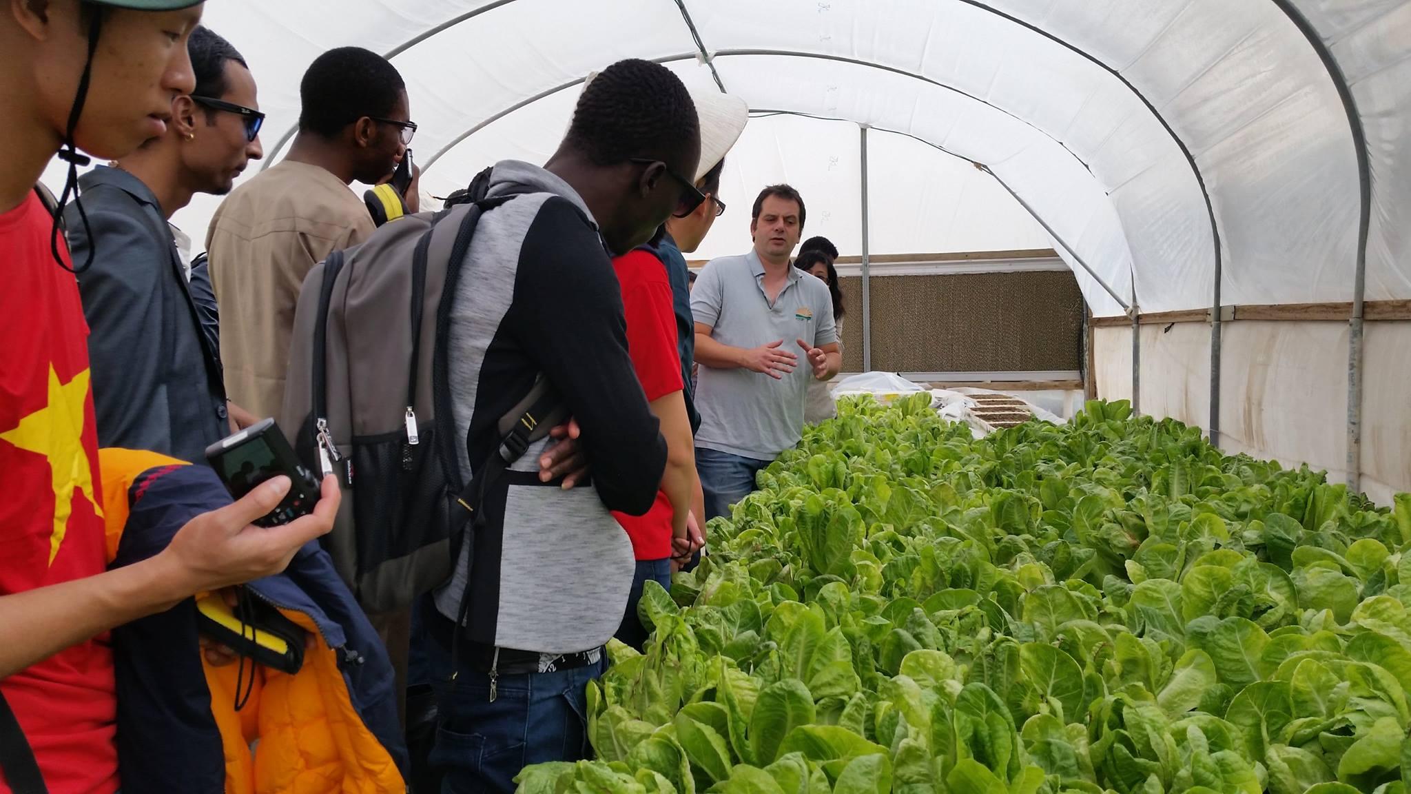 AICAT students learning from an Israeli farmer. Photo: courtesy