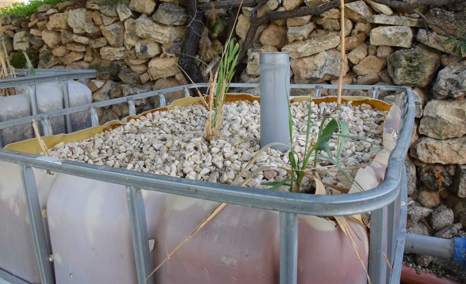 This gravel-based graywater system was developed at the Center for Transboundary Water Management of the Arava Institute. Photo: courtesy