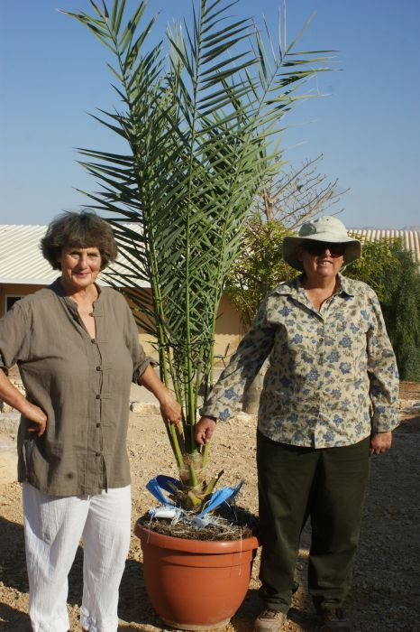 Dr. Sarah Sallon, left, and Elaine Solowey with Methuselah. Photo courtesy of Arava Institute