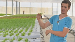 Tohar, a young Kaima farmer, explaining hydroponics to a visitor at Kaima's new hydroponic greenhouse at the Jerusalem Botanical Gardens. Photo by Judith Harpaz