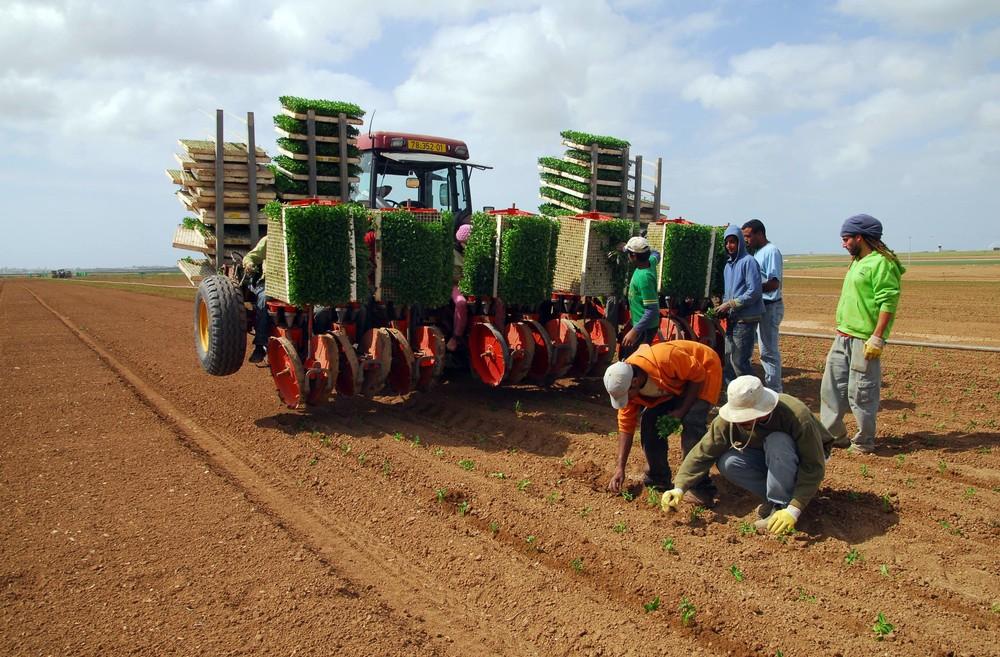 Israelis farming the Western Negev. Photo by www.shutterstock.com