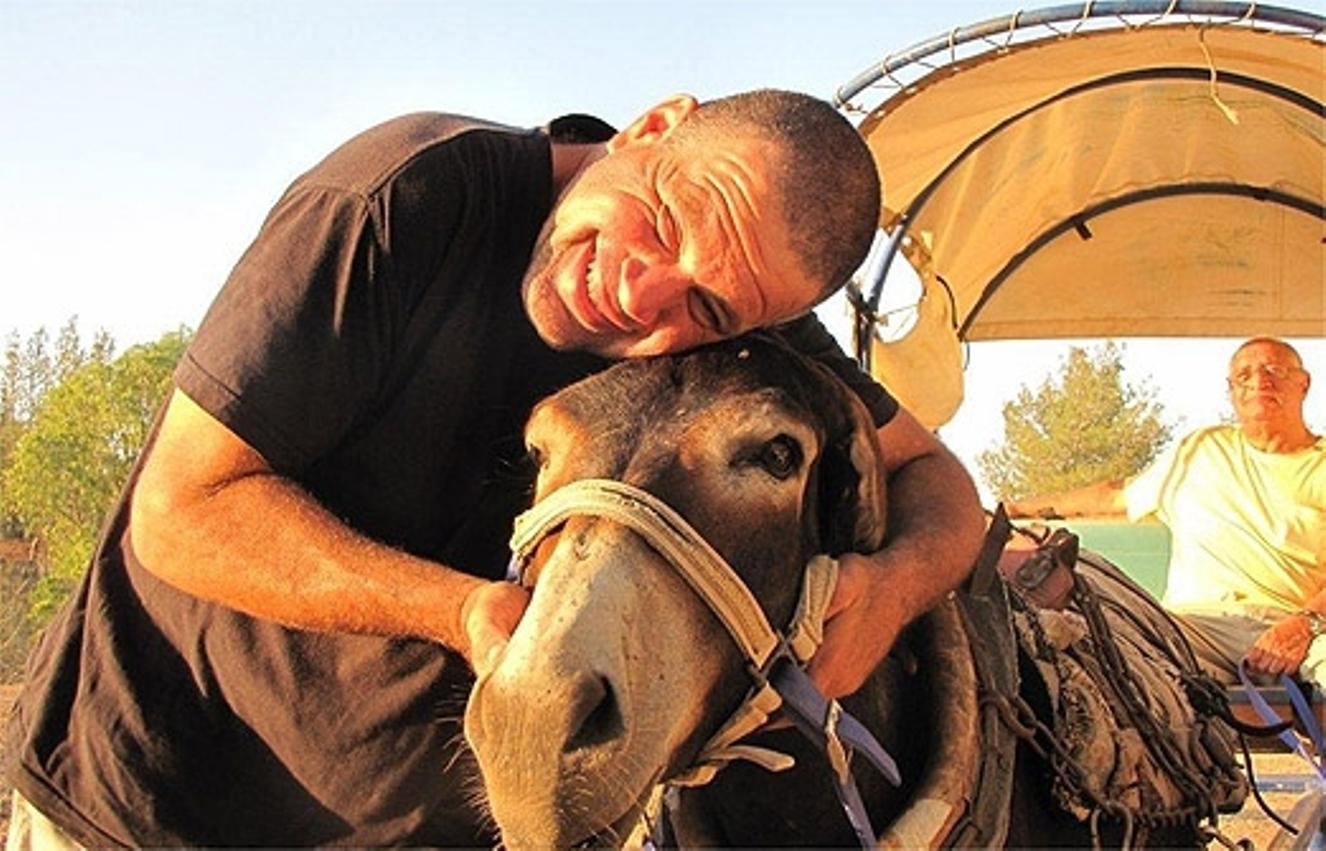 Donkey carts at Philip Carriage Farm. Photo via i-travelisrael.com