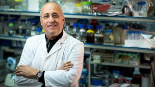 Prof. Yehuda Assaraf, dean of the Faculty of Biology and director of the Fred Wyszkowski Cancer Research Laboratory at the Technion. Photo: courtesy