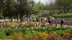 Visitors enjoying the Jerusalem Botanical Gardens last April. Photo by Judith Marcus