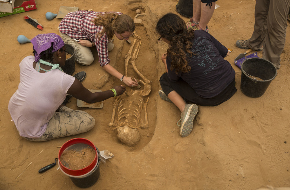 Students working in the Philistine cemetery discovered in Ashkelon. Photo by Tsafrir Abayov/Leon Levy Expedition