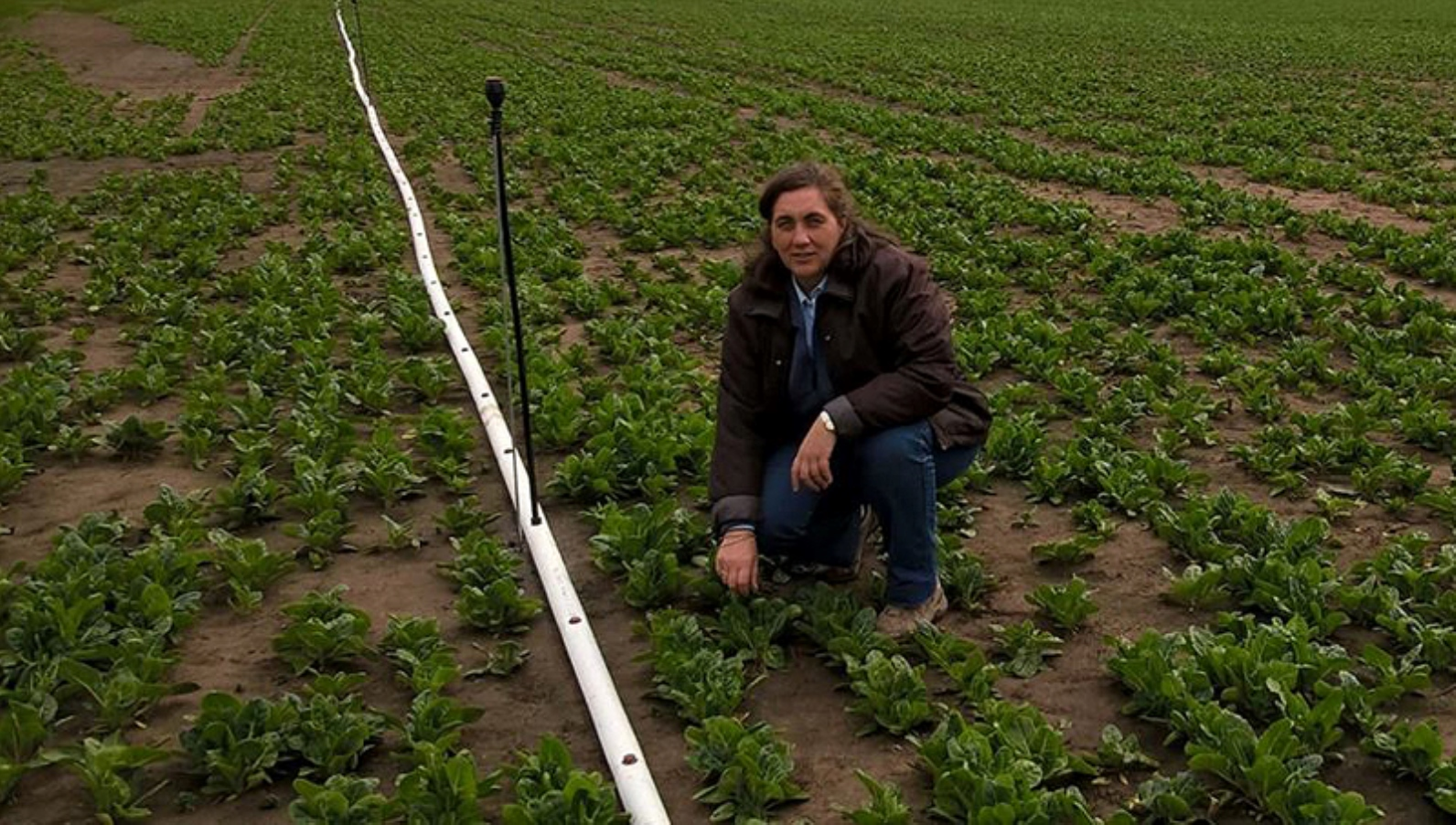 Agricultural Extension Officer Cristina Mondino, a graduate of a MASHAV-MATC course, is sharing with her colleagues in Argentina the horticulture knowledge she acquired in Israel. Photo: courtesy