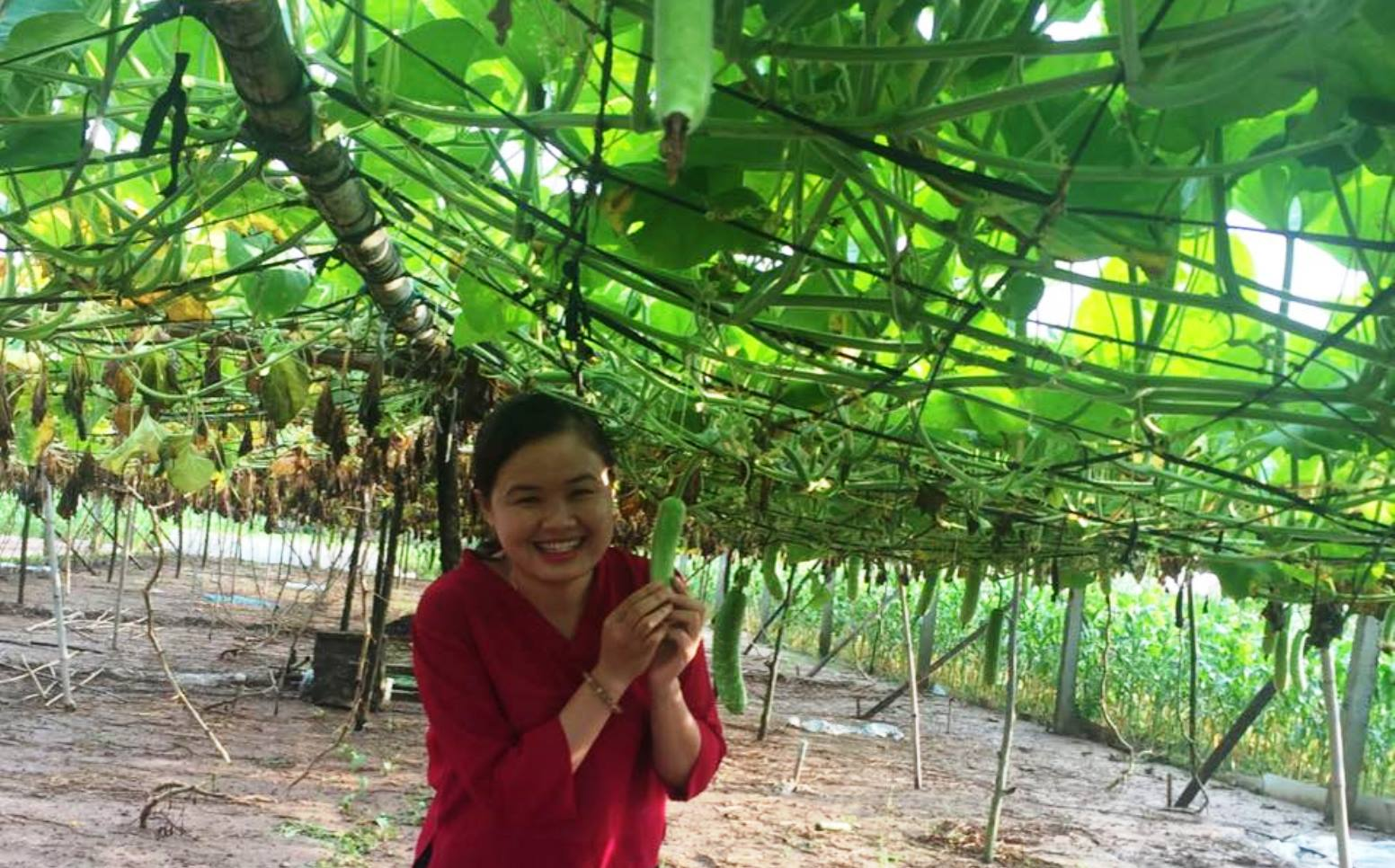 Anh Phung from Vietnam proudly showing her farm's yield after her AICAT training. Photo via Facebook
