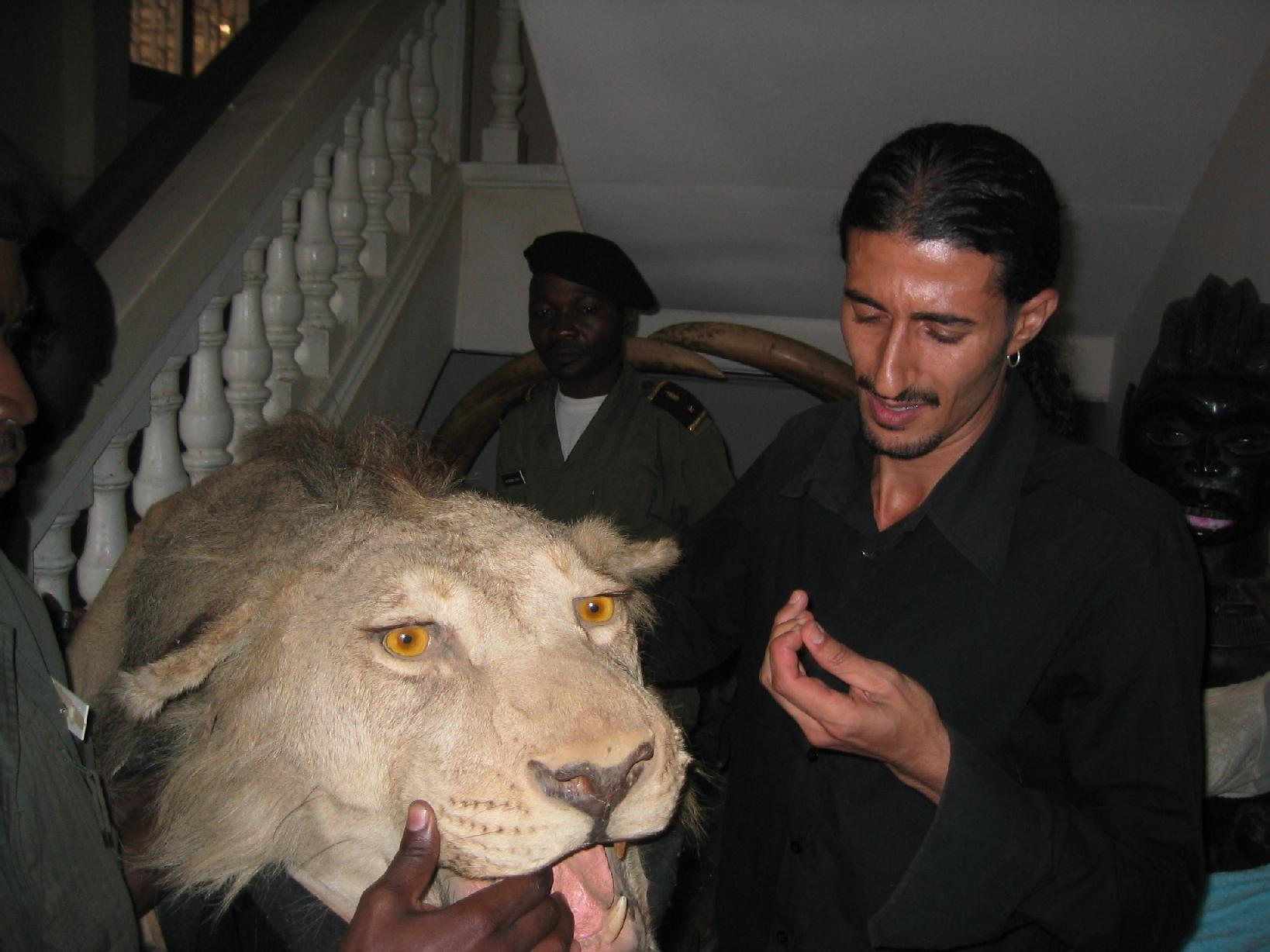 Lion teeth are among the many animal parts coveted by traffickers. Photo courtesy of EAGLE Network