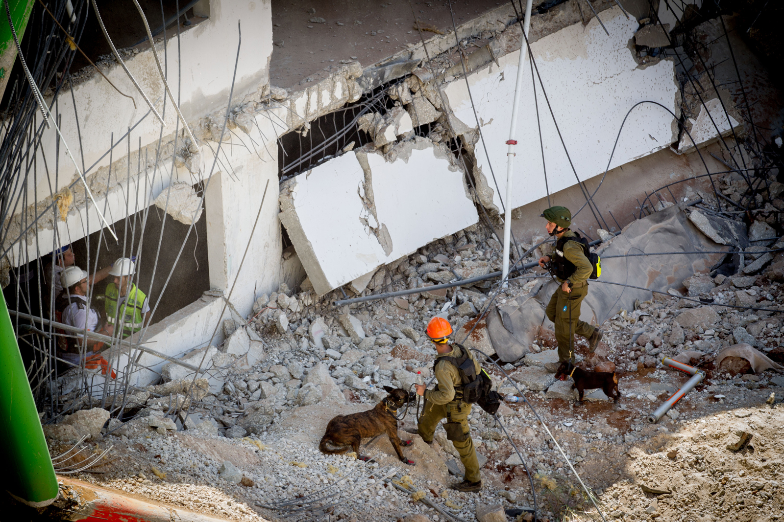 Rescue workers and canine units in action at the collapsed construction site in Tel Aviv, on September 5, 2016. Photo by Miriam Alster/Flash90