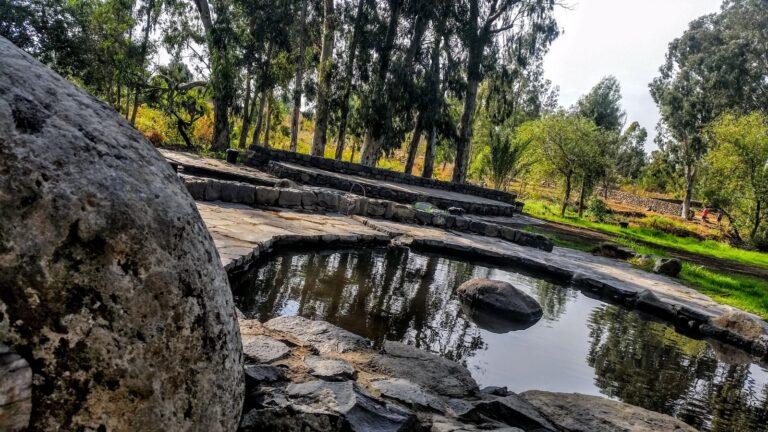Eden Spring Park in Katzrin. Photo by Mirela Felicia Catalinoiu