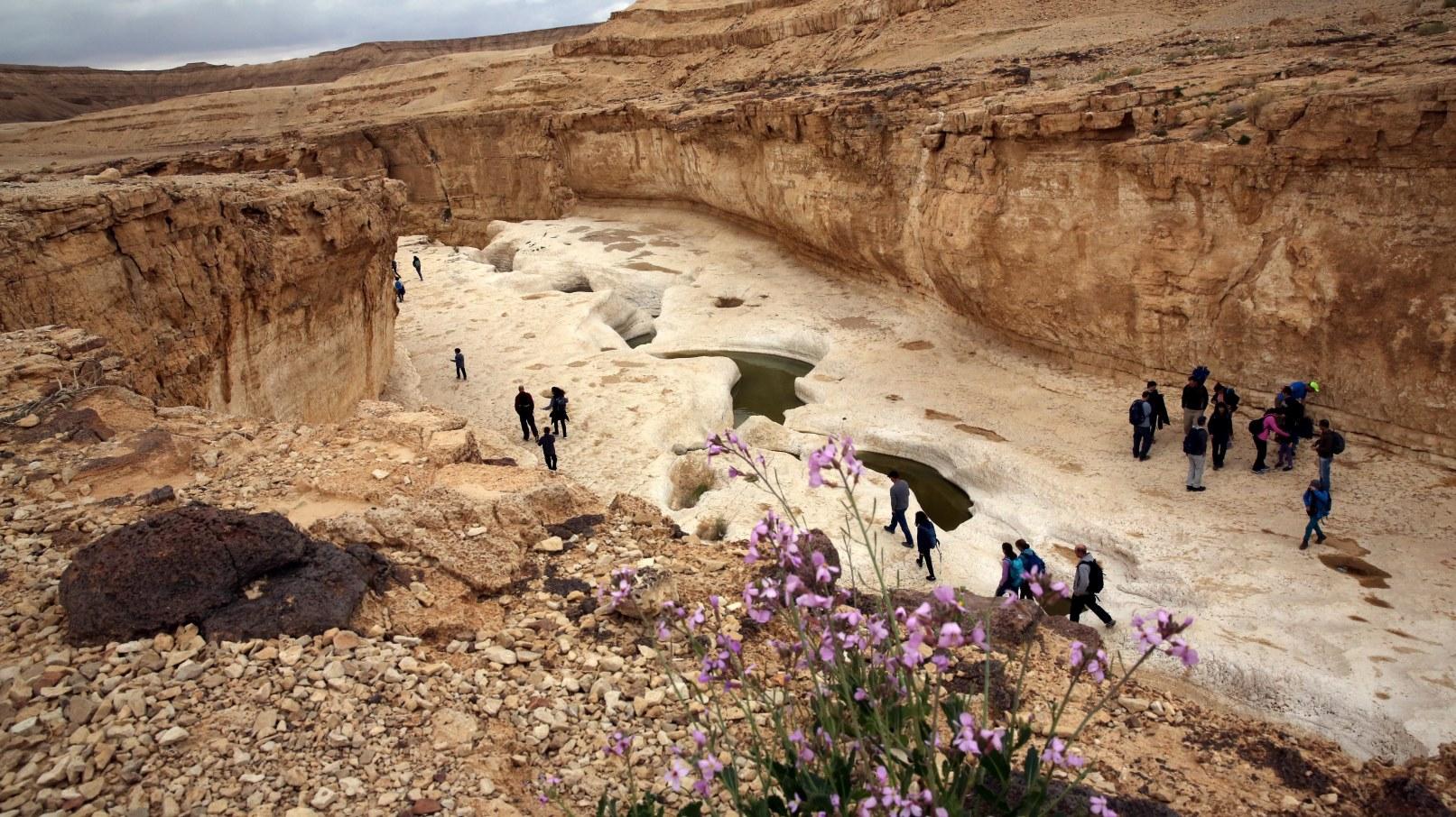Israelis hiking in the Judean Desert. Photo by Yossi Zamir/FLASH90