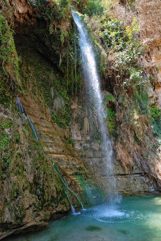 David's Waterfall in Ein Gedi. Photo by Shutterstock