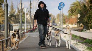 A Jerusalem dog-walker. Photo by Yossi Zamir/FLASH90