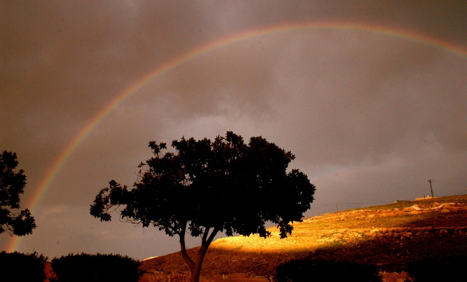 A rainbow in the Judean Desert. Photo by Yossi Zamir/FLASH90