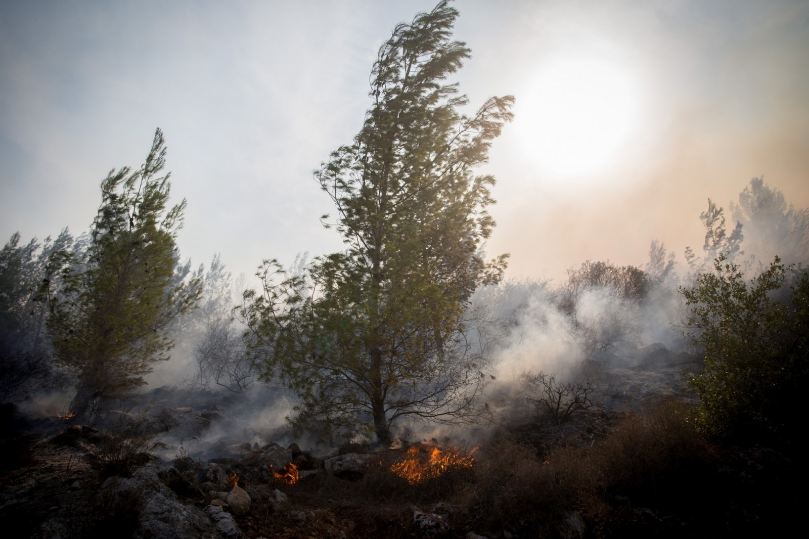 A forest fire broke out near Neve Ilan, outside of Jerusalem, on November 24, 2016. Photo by Yonatan Sindel/FLASH90