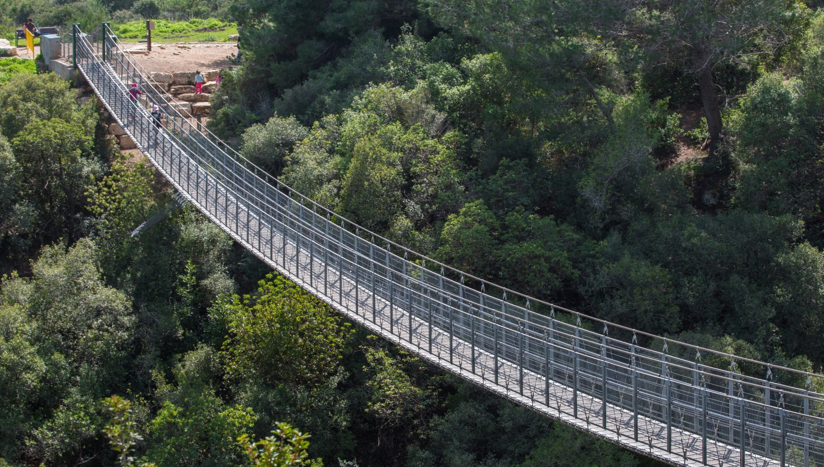 Suspension bridge in Nesher Park, just outside Haifa. Image by Roni Ben Ishay via Shutterstock.com