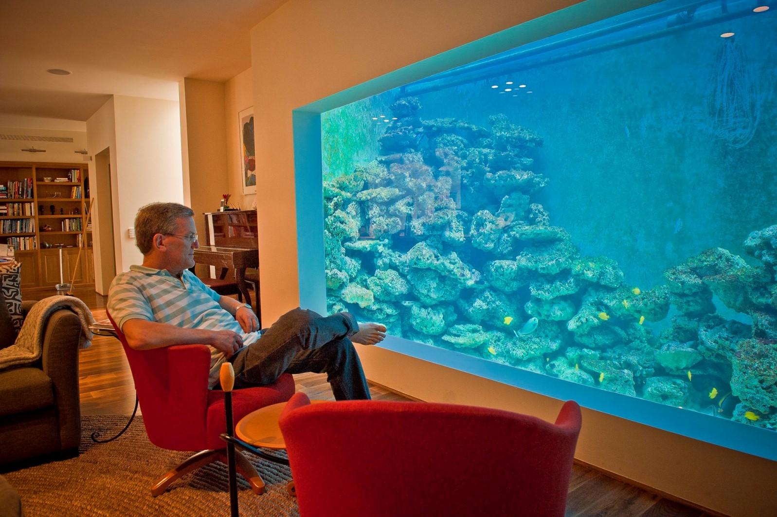 Favorit The Israeli who swims in his living room   ISRAEL21c QF04