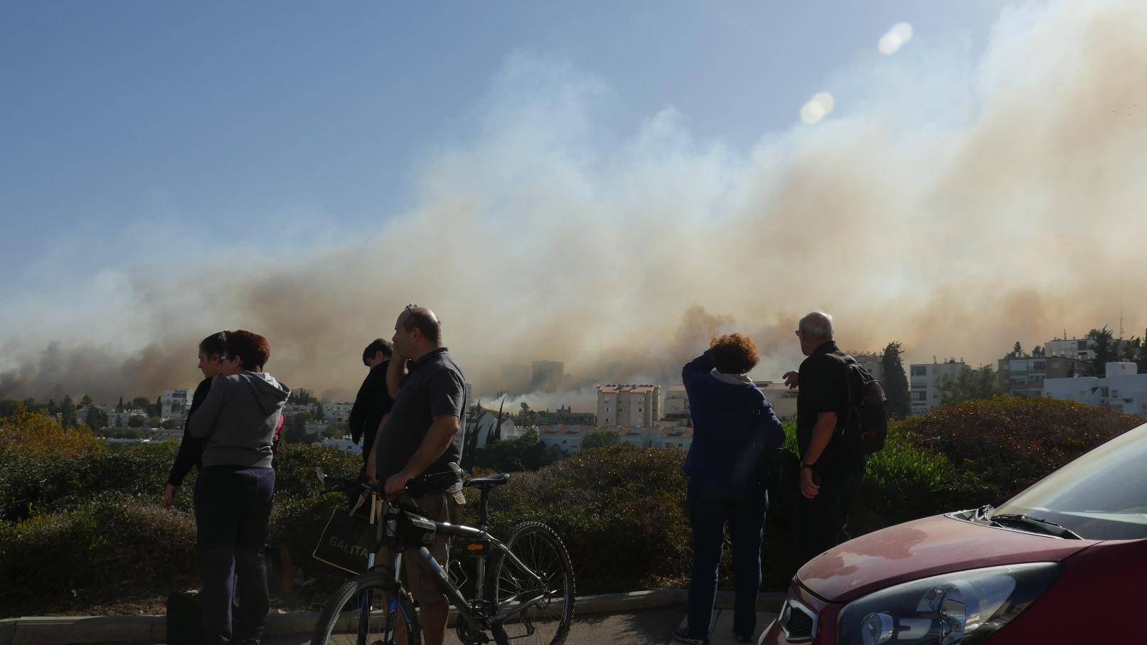 Watching Haifa burn, November 2016. Photo courtesy of Haifa municipality
