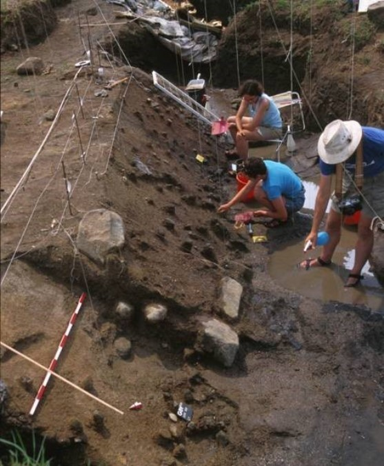 Excavations in the waterlogged site at Daughters of Jacob Bridge. Photo by Naama Goren-Inbar
