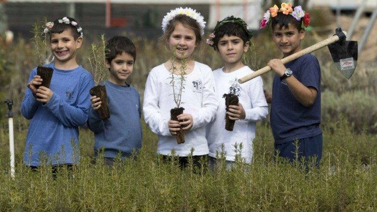 Israeli children planting trees in KKL-JNF nurseries on Tu B'Shvat, the New Year for Trees. Photo by Yossi Aloni